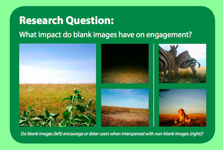 Blank and non-blank images in Snapshot Serengeti